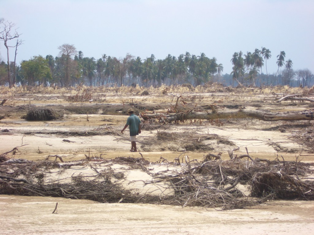 A new movie shows results of a FWF study on the devastating consequences of disaster aid on the Nicobar Islands in the aftermath of the 2004 tsunami.