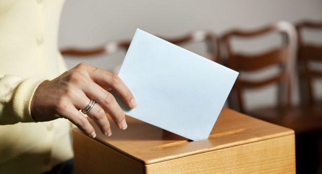 Die Österreichische Nationale Wahlstudie (AUTNES) hat mit Unterstützung des FWF Neuland betreten hat.