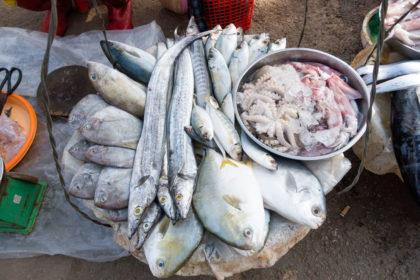 Rohe Meeresfische und Krustentiere auf einem Straßenmarkt in Vietnam.